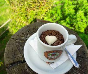 xícara de café com chocolate em banco de madeira e grama em volta